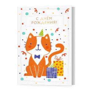 Открытка А6 с конвертом «С Днём рождения!», кот, Ф-15